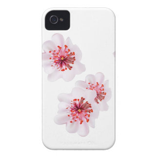 Pink cherry blossom sakura flowers  in Japanese st iPhone 4 Case