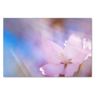 Pink cherry blossom tissue paper