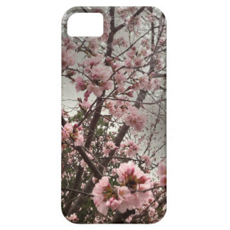 Pink Cherry Blossoms iPhone 5/5s Case