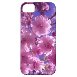 Pink Cherry Blossoms iPhone 5 Cover