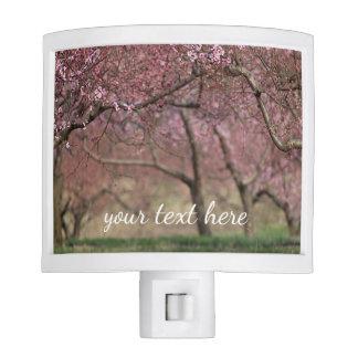 Pink Cherry Blossoms Nite Light