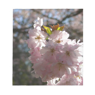 Pink cherry blossoms notepad