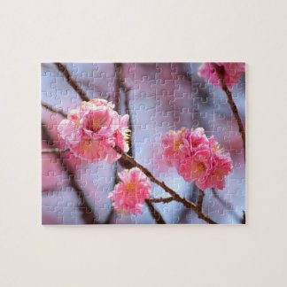 Pink Cherry Blossoms Puzzles