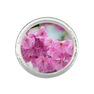 Pink Cherry Sakura Tree Ring
