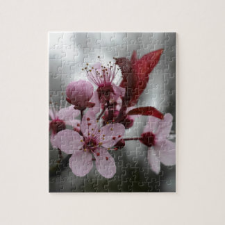 Pink Cherry Tree Blossom Puzzle