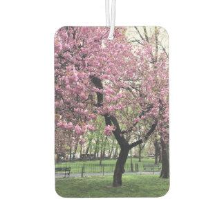 Pink Cherry Tree Blossom Springtime New York City Car Air Freshener