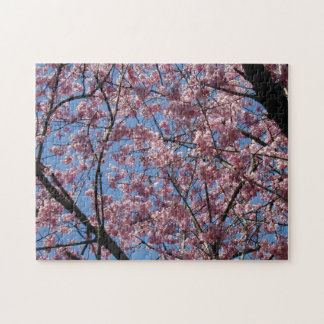 Pink Cherry Tree Blossoms or Flowers Jigsaw Puzzle