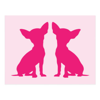 Pink Chihuahua dog cute postcard