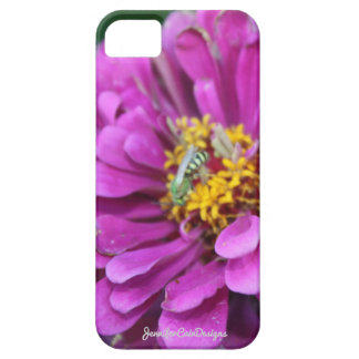 Pink Chrysanthemum iPhone 5 Cover