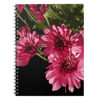 Pink Chrysanthemums Notebooks