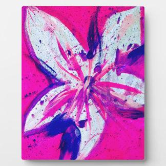 pink-city plaque