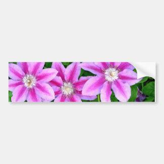 Pink Clematis  and wild Oregano Bumper Sticker
