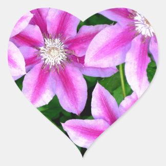 Pink Clematis  and wild Oregano Heart Sticker