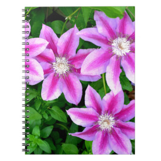 Pink Clematis  and wild Oregano Notebook