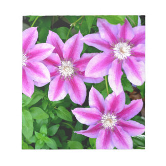 Pink Clematis  and wild Oregano Notepad