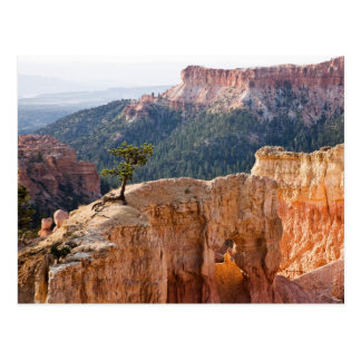 Pink Cliffs Postcard