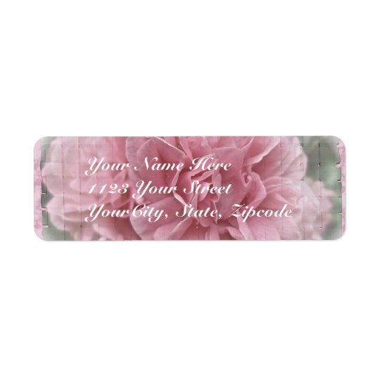 Pink Climbing Rose Blossoms Return Address Label