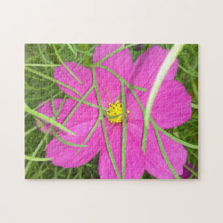 Pink Cosmos Flower Hiding Jigsaw Puzzle