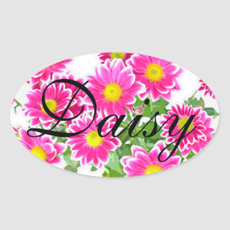 Pink Daisies / Asters Bouquet + your ideas Oval Sticker