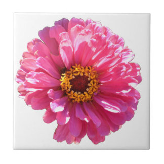 Pink Daisy Tile