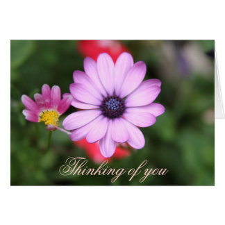 Pink daisy type flower card