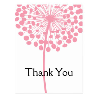 Pink Dandelion Flower Thank You Postcards 2