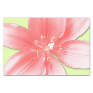 pink daylily tissue paper