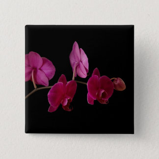 Pink Dendrobium Orchid - Customized Flowers 2 Inch Square Button