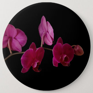 Pink Dendrobium Orchid - Customized Flowers 6 Inch Round Button
