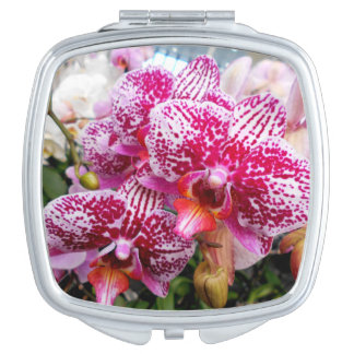 Pink Dendrobium Orchids Vanity Mirrors
