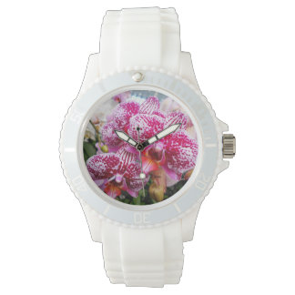 Pink Dendrobium Orchids Watch