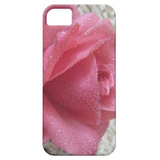 Pink Dew Rose iPhone 5 Cases