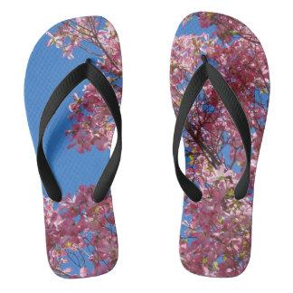 Pink Dogwood and Blue Sky Flip Flops