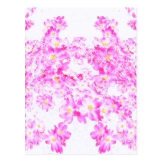 Pink Dogwood Blossom Postcard