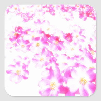 Pink Dogwood Blossom Square Sticker