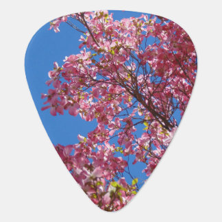 Pink Dogwood Flowers Guitar Pick