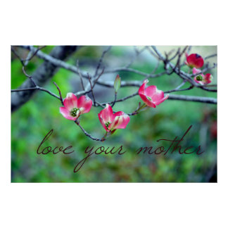 Pink Dogwood in Bloom Earth Day Poster