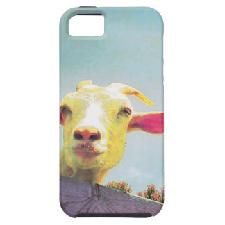 Pink-eared goat iPhone 5 covers