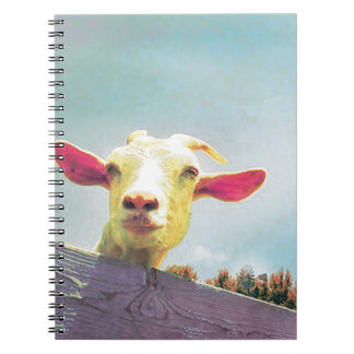 Pink-eared goat notebooks