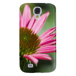 Pink Echinacea Coneflower Blossom Backgrounds