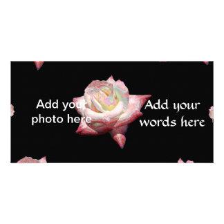 Pink Enameled Roses on Black Customized Photo Card