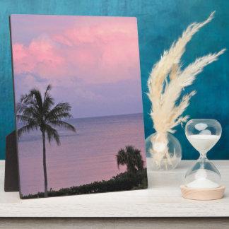 Pink Evening Sky over Ocean Display Plaques