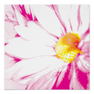 Pink Explosion Floral Abstract Poster