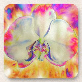 Pink fire orchid coasters