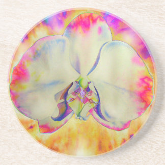 Pink fire orchid drink coasters