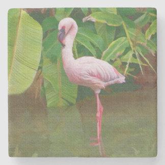 Pink Flamingo at the Lake in Florida Stone Coaster