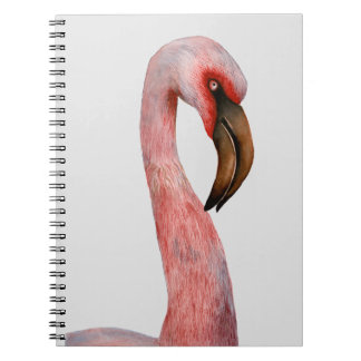 Pink Flamingo Bird Watercolour Painting Artwork Notebook