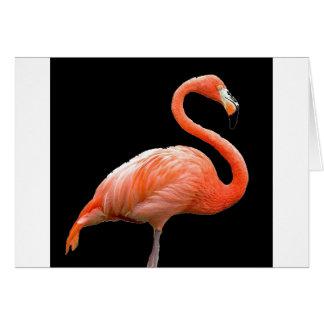 """""""Pink flamingo"""" Card"""