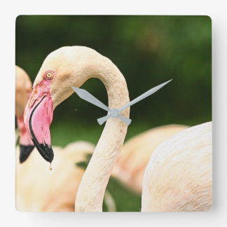 Pink Flamingo Clock! Clock