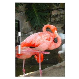 Pink Flamingo Dry-Erase Whiteboard